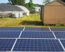 solar panels on ground