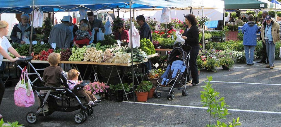 People shopping at the Mount Vernon Farmers Market