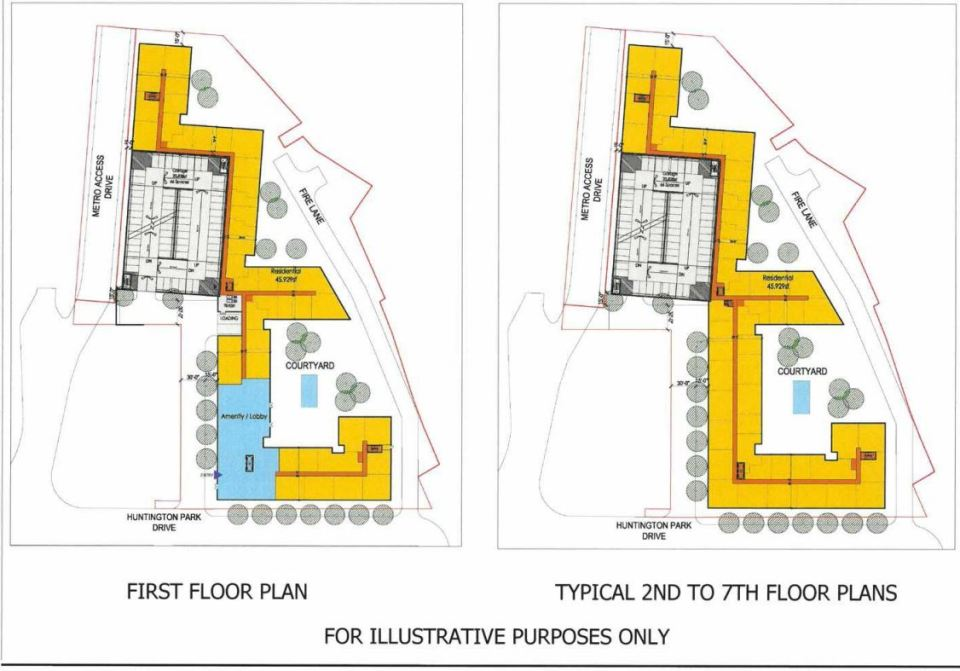 Illustrations of plans for the site