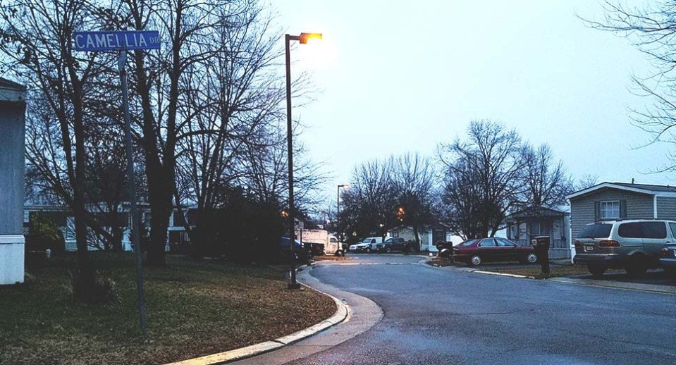 Evening view of street with Cameillia Drive sign visible on left