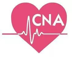 Entry Level CNA Cover Letter No Experience | 3+ Samples | CLR