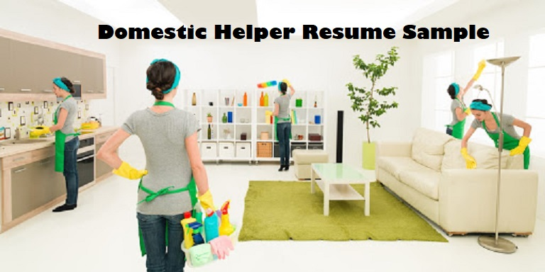Domestic Helper Resume Sample Housekeeper Maid Resumes Clr