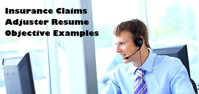 Insurance Claims Adjuster Resume Objective Page Image