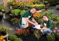 Nursery Plant Worker Cover Letter Page Image