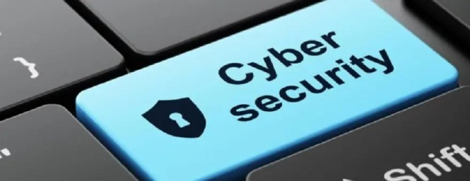 Objectives for Cyber Security Specialist Page Image