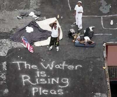 Zeitoun FEMA y el huracán Katrina |  GradeSaver