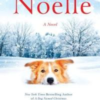 Blogging For Books Review: Noelle by Greg Kincaid