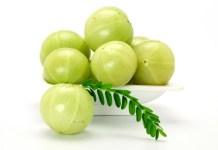 Health Benefits of Indian Gooseberry or Amla