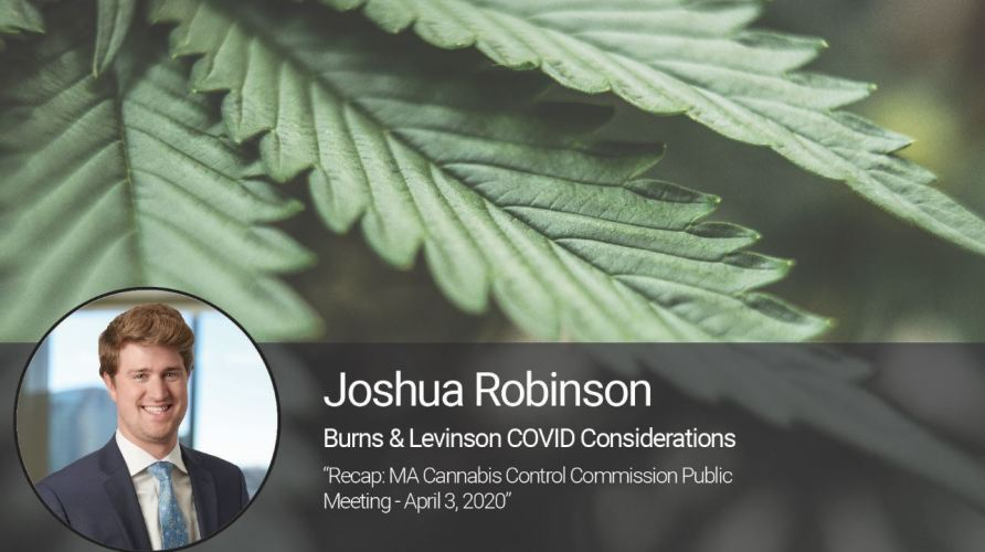 Recap: MA Cannabis Control Commission Public Meeting - April 3, 2020
