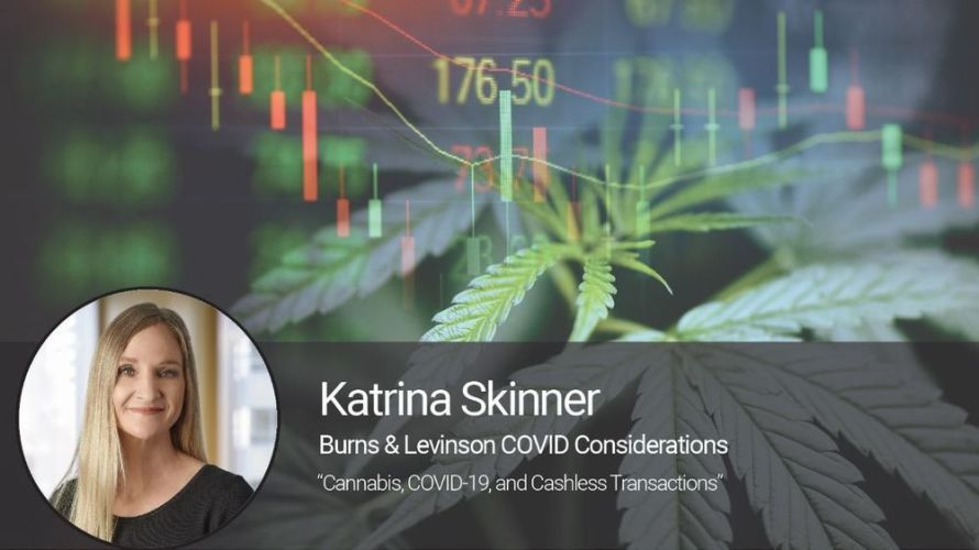 Cannabis, COVID-19, and Cashless Transactions