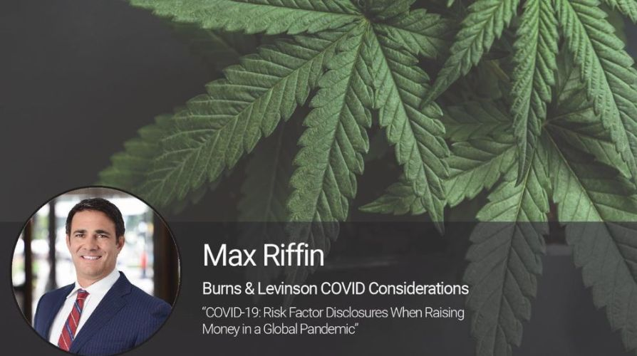 Risk Factor Disclosures: Raising Money for Cannabis-Related Businesses