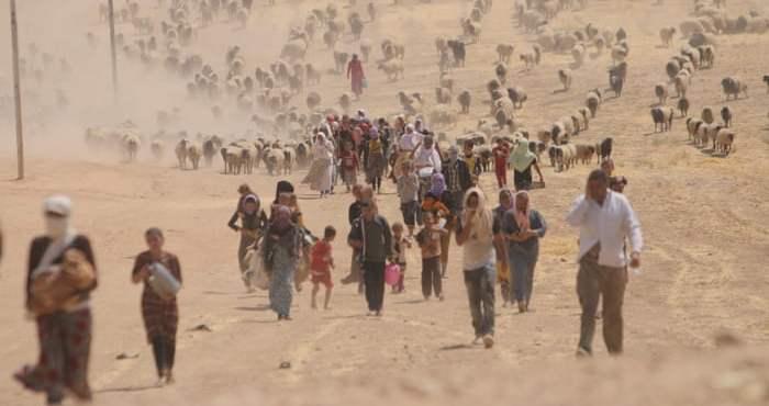 La crisis de los yazidíes continúa en desarrollo. Ponerle fin es un imperativo moral – Por Alon Ben Meir