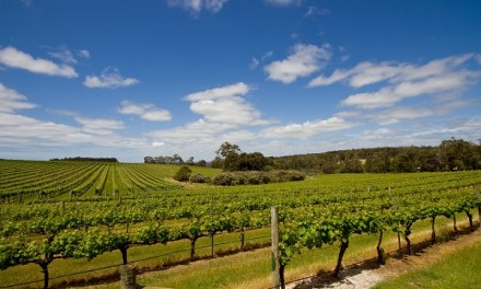 9 Day Margaret River Tour 2020