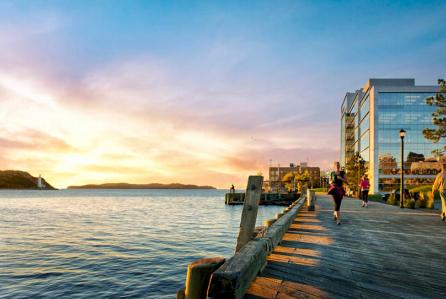 Ketch Harbour Area