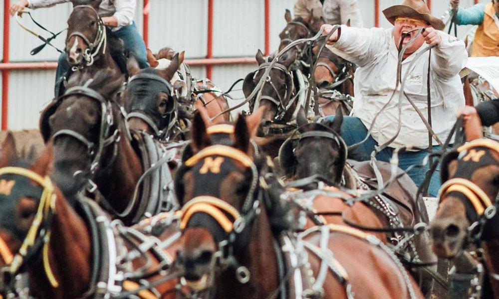 Ponoka Stampede 2019 Cowboy Lifestyle Network