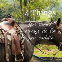 Saddle Care: 4 Things You Should Always Do
