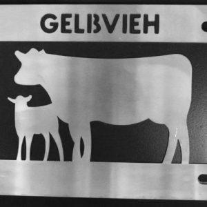 GELBVIEN COW/CALF