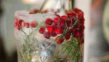 cranberry-ice-bucket
