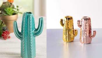 cacti vases