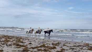 Cowgirl - Beaches
