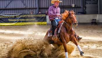 Cowgirl - Reining