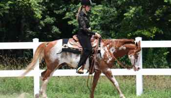 Cowgirl - Posture