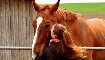 """Cowgirl Magazine"" - Short Equestrains"