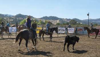 Ranch Roping Buck Brannaman Cowgirl Magazine Pro Am Vaquero by Ken Amorosano