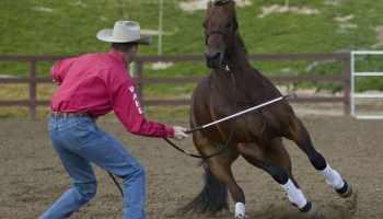 """""""cowgirl Magazine"""" - Clinton Anderson Respect"""