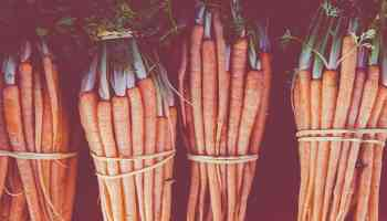 bunches of carrots treat recipe cowglrl magazine