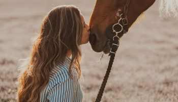 Horse Owner