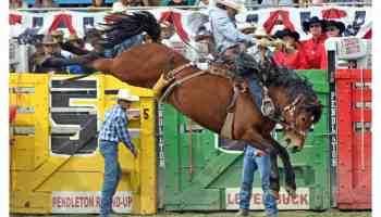 Pendleton Bronc Riding Cowgirl Magazine