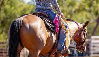 triple crown nutrition leaky gut syndrome cowgirl magazine