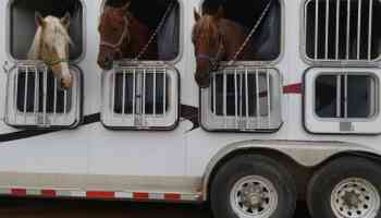 trailering cowgirl magazine