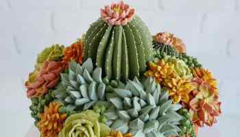 Cactus and Succulent Cake