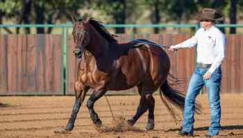 open house cowgirl magazine