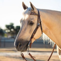 Bridles & Headsetters