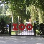 Wybierasz się do krakowskiego zoo? Od soboty zmiany dojeździe!