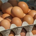 Tesco! Wycofano partię jajek, w których stwierdzono Salmonellę