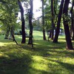 Poznaj park Zielony Jar Wandy