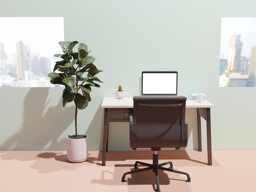 El servicio de puesto fijo es ideal para un emprendedor que quiere utilizar el servicio coworking por un tiempo largo.