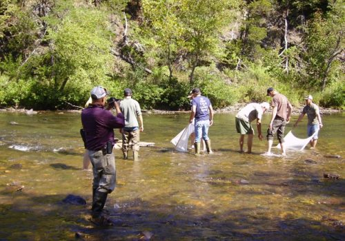 CRPA Members Provide macrobenthos Training to Local College Students