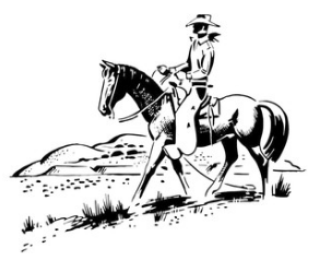Hollywood Cowboy On Horse (Image)