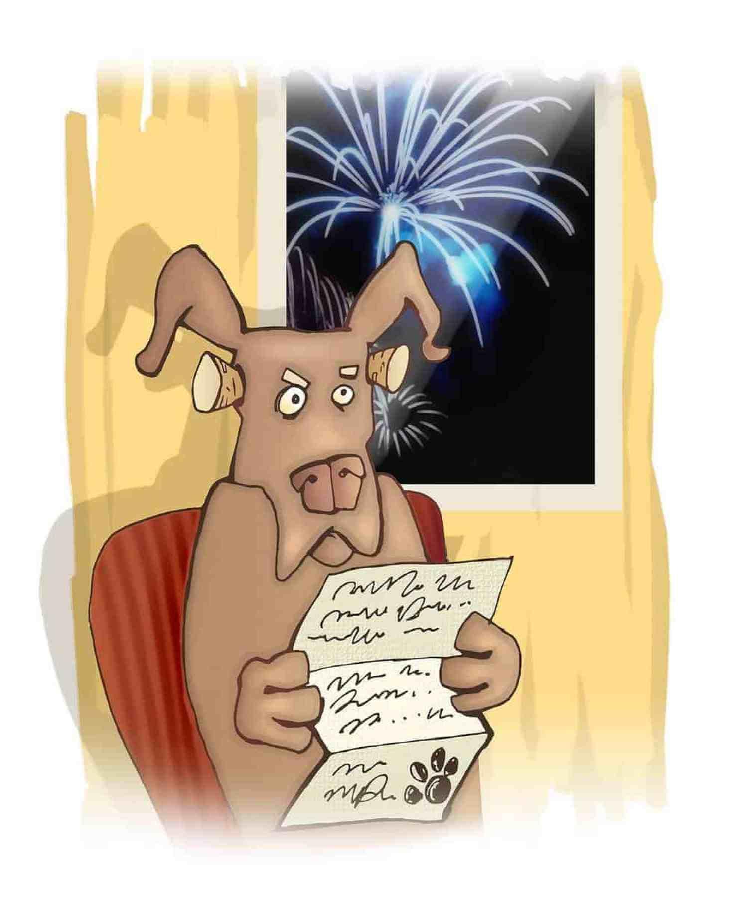 pies boi się fajerwerków