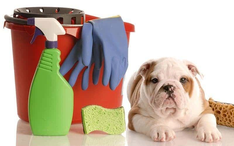 Zatrucie: artykuły gospodarstwa domowego