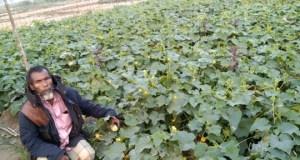 http://coxview.com/wp-content/uploads/2021/01/Farmer-Jafar-Sagar-26-1-21.jpg
