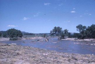 Plum Creek near Sedalia.