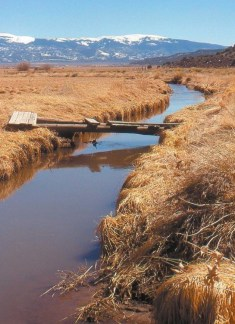 San Luis People's Ditch via The Pueblo Chieftain
