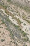 Pulse flow tongue upstream of San Luis Rio Colorado