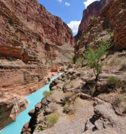 The confluence of Havasu Creek with the Colorado River (river mile 157) is a popular place for boaters to stop and admire the striking blue-green water of Havasu Creek. The turquoise color is caused by water with a high mineral content. At the point where the blue creek meets the turbid colorado river there often appears a definite break. NPS photo by Erin Whittaker.